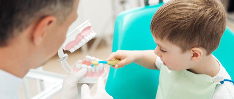 Orthodontie Meusnes
